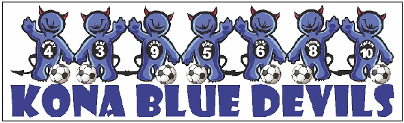 Blue Devils BSticker